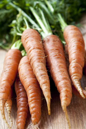 Bunch of whole fresh organic orange carrots Stock Photo - 5282479