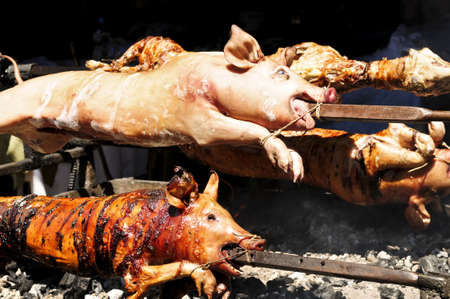 Spit roasted pigs cooked over hot coals photo