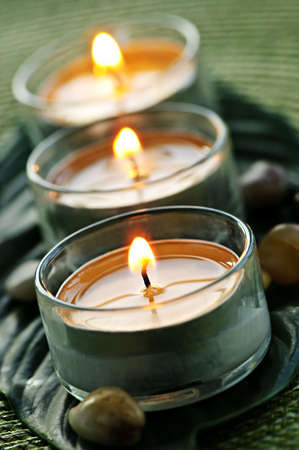 Burning candles in glass holders on green leaf photo