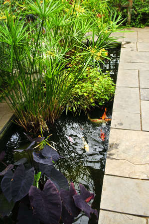 koi fish pond: Lush green garden with stone landscaping and koi pond