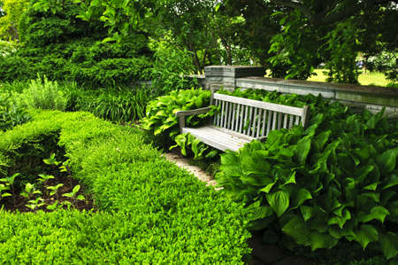Lush green garden with stone landscaping, hedge and bench photo