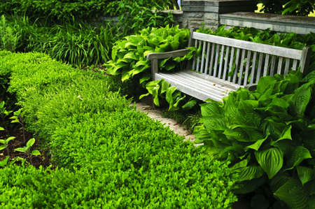 Lush green garden with stone landscaping, hedge and bench Stock Photo