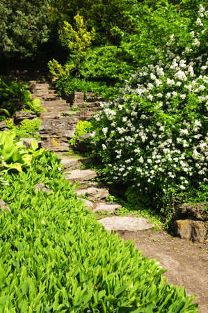 Landscaped garden path with natural stone steps photo