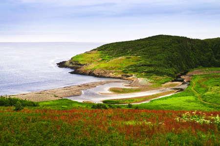Newfoundland: Scenic coastal view of rocky Atlantic shore in Newfoundland, Canada