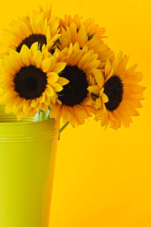 Bouquet of sunflowers in yellow metal vase
