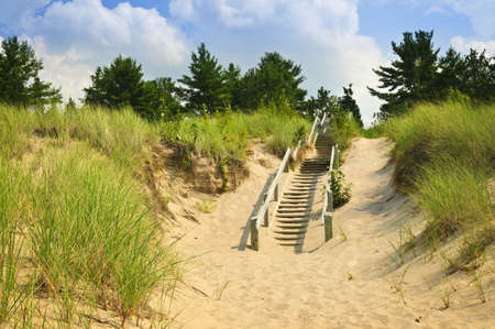 Wooden stairs over dunes at beach. Pinery provincial park, Ontario Canada photo