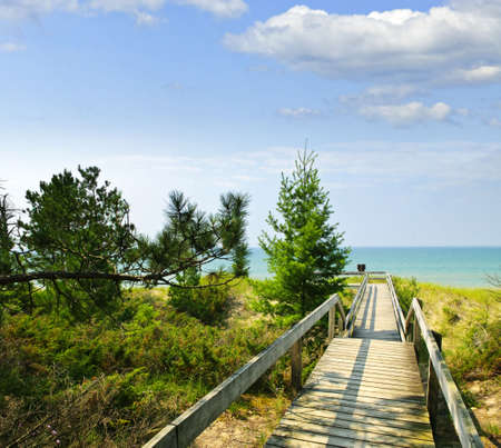 provincial: Wooden path over dunes at beach. Pinery provincial park, Ontario Canada
