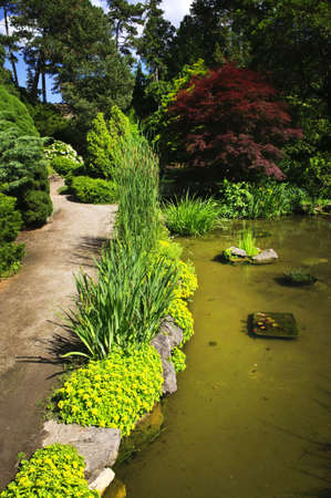 Landscaped garden path with plants and pond photo
