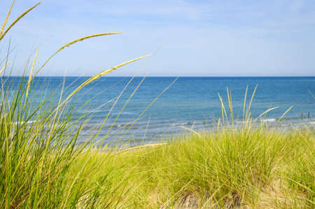 ocean waves: Grass on sand dunes at beach. Pinery provincial park, Ontario Canada