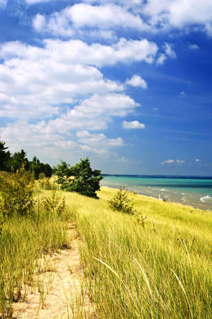 pinery: Sand dunes at beach shore. Pinery provincial park, Ontario Canada Stock Photo