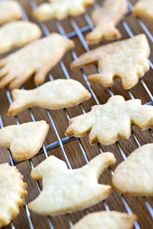 Cooling rack with fresh baked homemade shortbread cookies photo