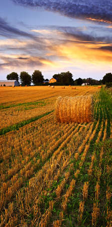 prairie: Golden sunset over farm field with hay bales Stock Photo
