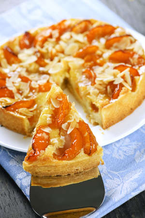 Slice of fresh baked apricot and almond pie dessert Stock Photo - 6708290