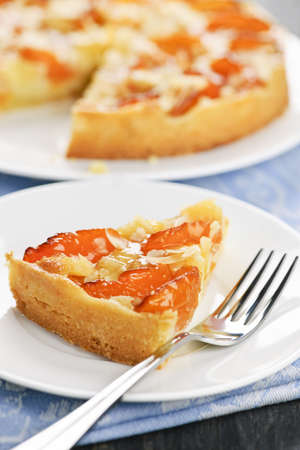 slivers: Slice of fresh baked apricot and almond pie dessert