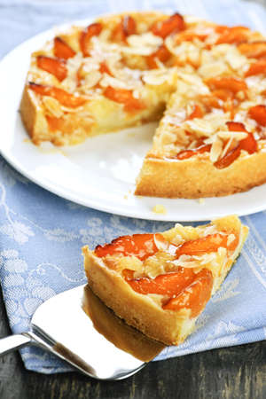 Slice of fresh baked apricot and almond pie dessert Stock Photo - 6754436