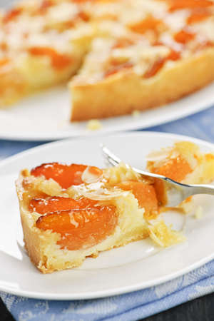 Slice of fresh baked apricot and almond pie dessert photo
