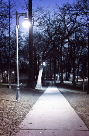 Path through city park at night with street lamps photo