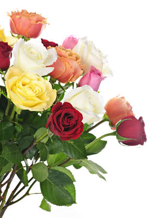 Bouquet of assorted multicolored  roses isolated on white background photo