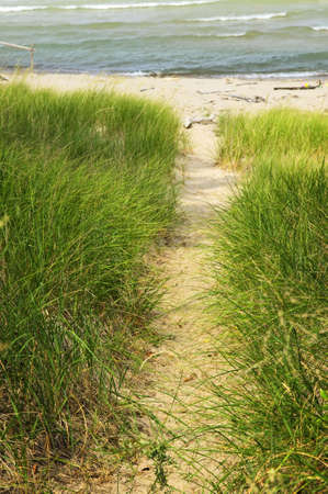 pinery: Entrance path to beach. Pinery provincial park, Ontario Canada Stock Photo