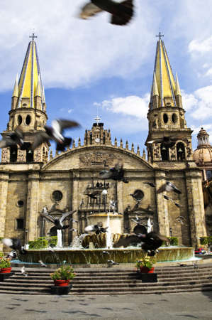 guadalajara: Pigeons flying in front of the Cathedral in historic center in Guadalajara, Jalisco, Mexico