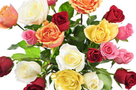 Bouquet of assorted multicolored roses from above on white background photo
