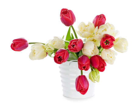 Bouquet of red and white tulips isolated on white background