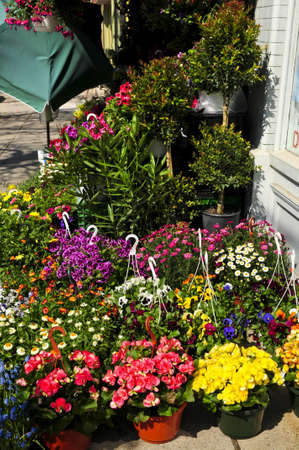 Flower baskets for sale at flower stand photo