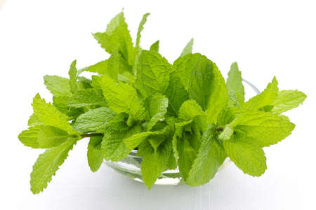 Bunch of fresh mint sprigs in clear glass bowl photo