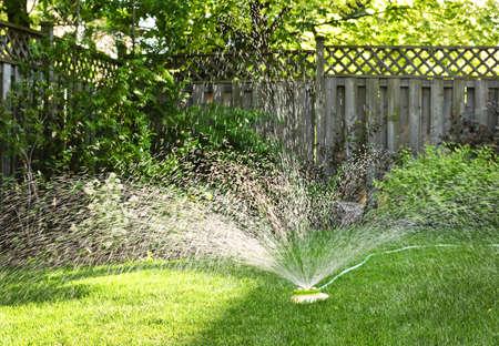 Watering backyard green grass lawn with sprinkler