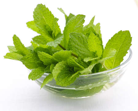 sprigs: Bunch of fresh mint sprigs in clear glass bowl Stock Photo