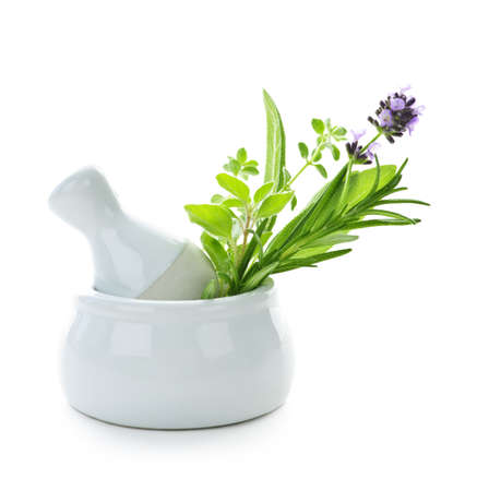 trituration: Healing herbs in white ceramic mortar and pestle isolated on white background Stock Photo