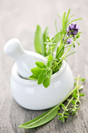 medicinal herb: Healing herbs in white ceramic mortar and pestle Stock Photo
