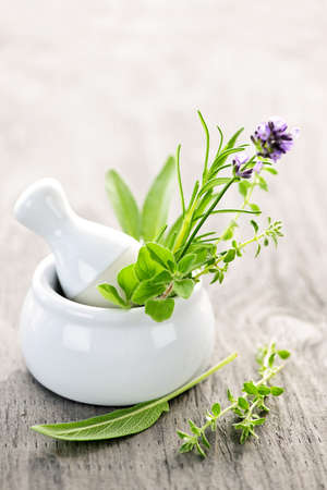 Healing herbs in white ceramic mortar and pestle Reklamní fotografie