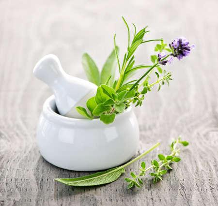 vijzel: Genezende kruiden in de witte ceramische mortier en een stamper  Stockfoto