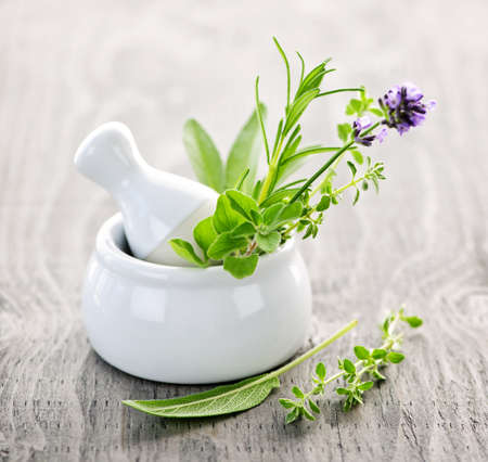 Healing herbs in white ceramic mortar and pestle Foto de archivo