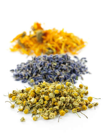 Piles of dried medicinal herbs camomile, lavender, calendula on white background Stok Fotoğraf - 7776400
