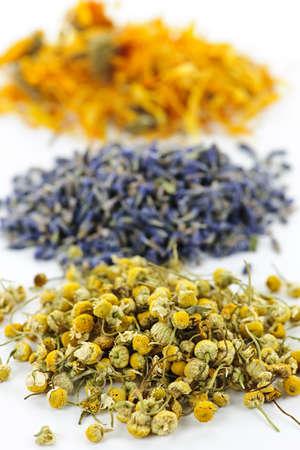 plantas medicinales: Montones de manzanilla de hierbas medicinales secas, lavanda, cal�ndula sobre fondo blanco