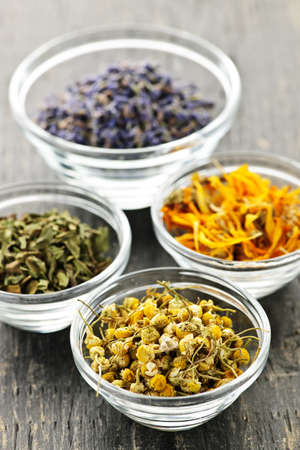 alternative medicine: Assortment of dry medicinal herbs in glass bowls Stock Photo