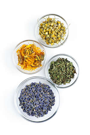 Bowls of dry medicinal herbs on white background from above Stock Photo - 7983254