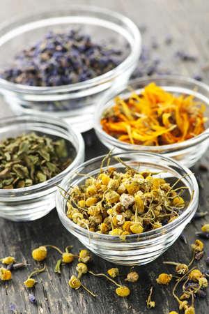 erbe aromatiche: Assortimento di erbe medicinali secco in ciotole di vetro