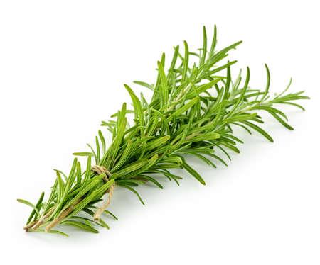 Rosemary takjes gebonden in bundel geïsoleerd op witte achtergrond Stockfoto