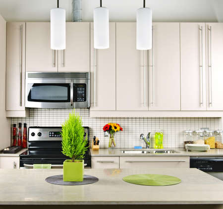 Modern kitchen inter with natural stone countertop Stock Photo - 8089533