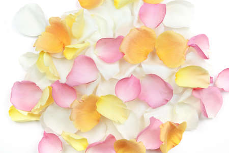 Abstract background of fresh scattered rose petals Archivio Fotografico