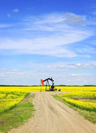 horsehead pump: Oil pumpjack or nodding horse pumping unit in Saskatchewan prairies, Canada Stock Photo