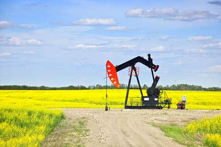 pozo petrolero: Caballo de biela-manivela o con la cabeza de aceite, unidad de bombeo en las praderas de Saskatchewan, Canadá
