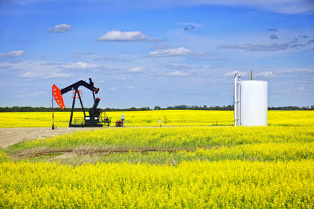 Oil pumpjack or nodding horse pumping unit in Saskatchewan prairies, Canada 版權商用圖片