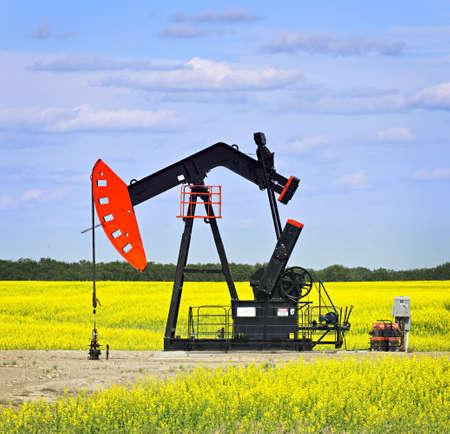pozo petrolero: Caballo de biela-manivela o con la cabeza de aceite, unidad de bombeo en las praderas de Saskatchewan, Canad�