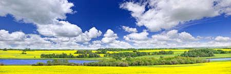canola: Panoramic landscape prairie view of canola field and lake in Saskatchewan, Canada Stock Photo