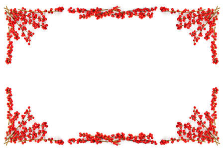 berry: Red winterberry Christmas frame with holly berries on branches
