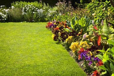 Mooie kleurrijke bloementuin met verschillende bloemen Stockfoto